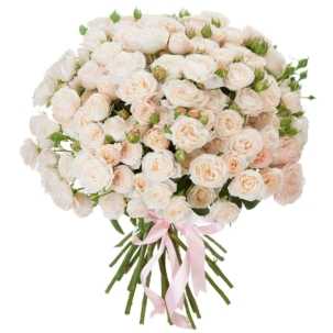 Розы Пионовидные белые