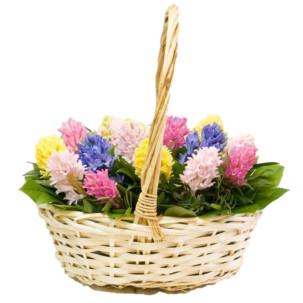"""Цветы в корзинке """"Буйство красок"""""""